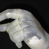 prosthetics, bionics, genomics, genomic revolution, arkg, arkgenome, ARK, ARK Investment Management, Innovation, ETF, Active management, thematic, investing, disruptive innovation, investment management, james bannon, growing limbs,