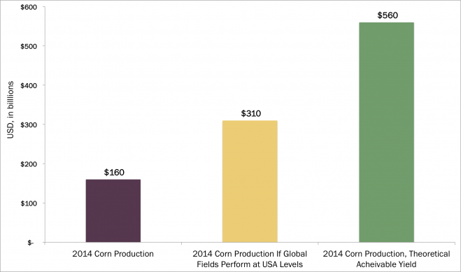 CornProduction