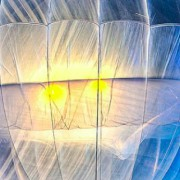 loon balloons, internet, chart, balloons, drones, Project Loon, GoogleX