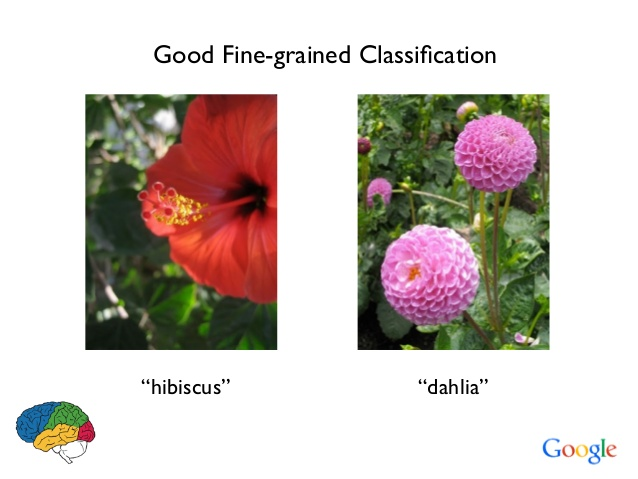 Artificial Intelligence, classification, google