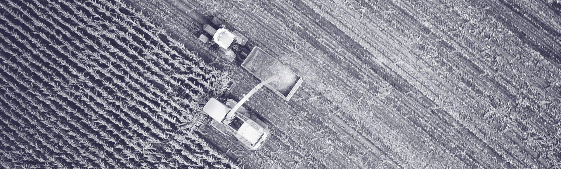 ARK-Invest_Blog-Banner_2014_12_15---Montana-Data-Agriculture